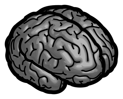 brain_400